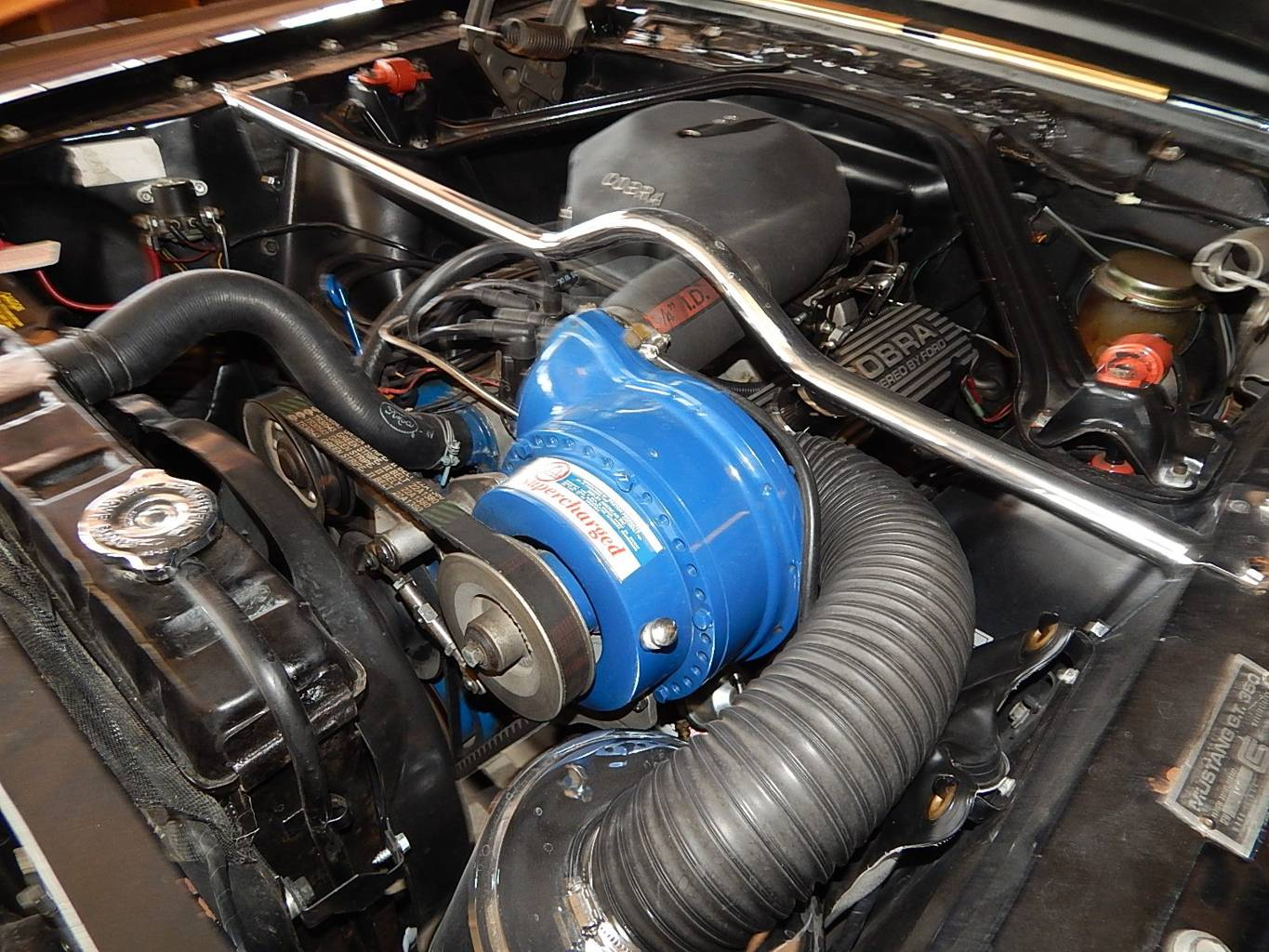 6th Image of a 1966 FORD SHELBY GT350H