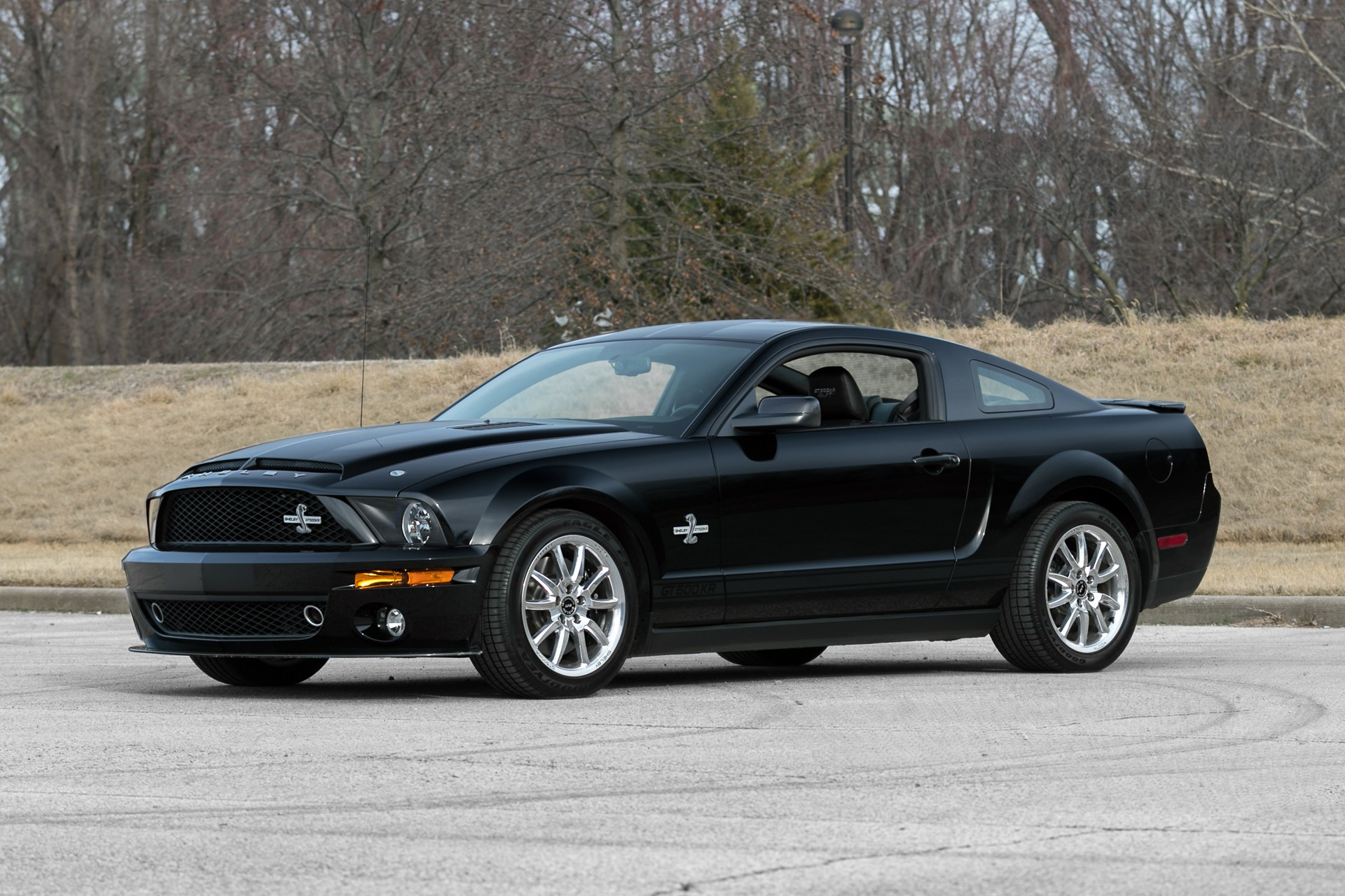 1st Image of a 2009 FORD FORD SHELBY GT500KR