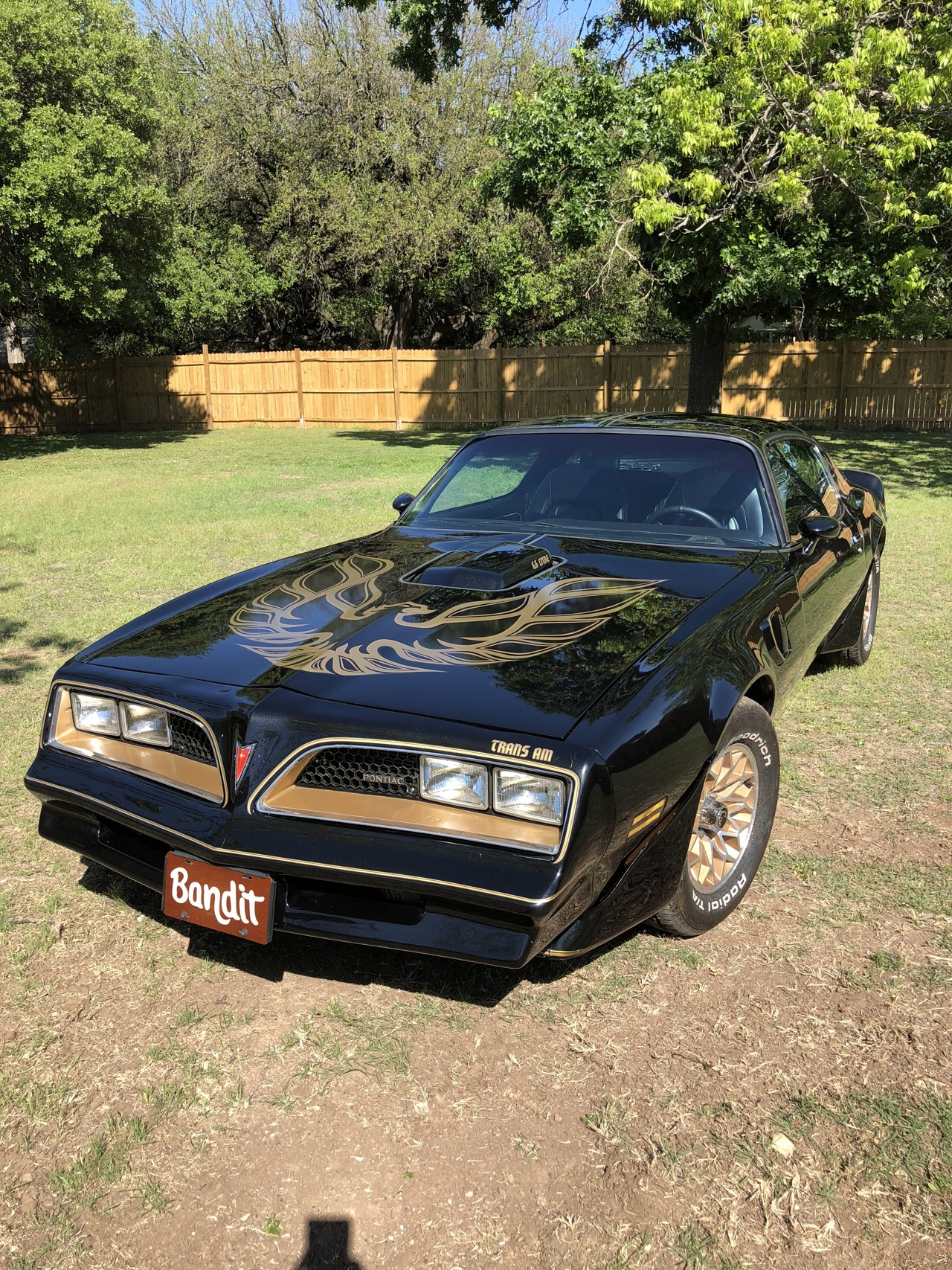 2nd Image of a 1980 PONTIAC FIREBIRD