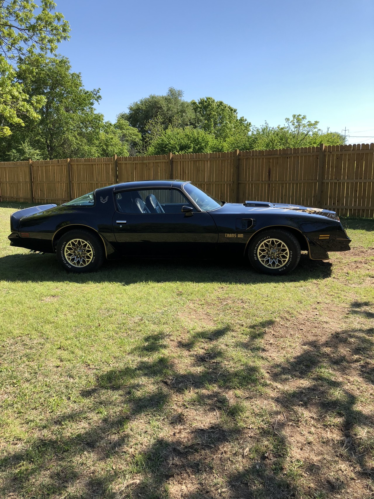 4th Image of a 1980 PONTIAC FIREBIRD