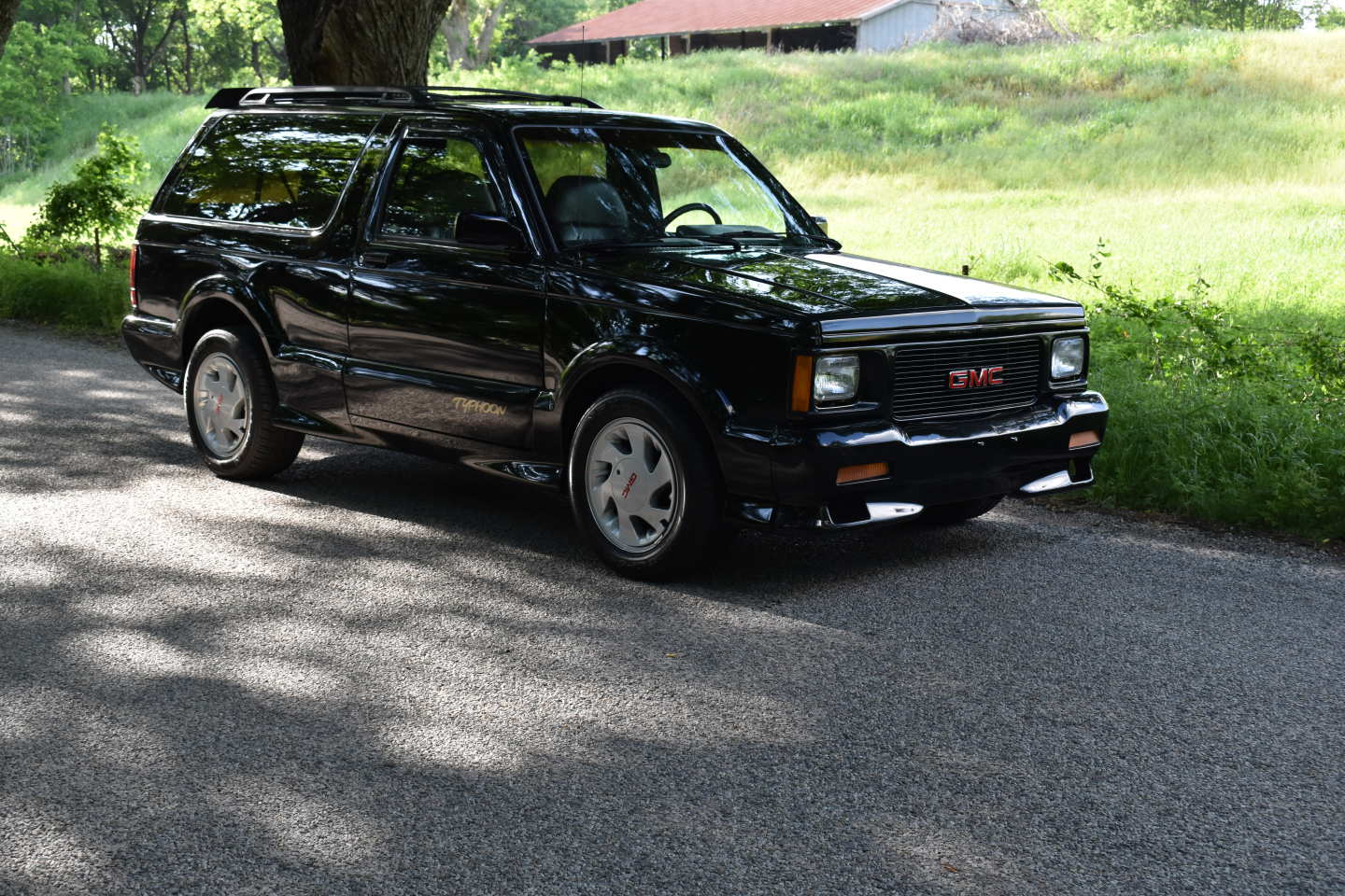 19th Image of a 1993 GMC TYPHOON