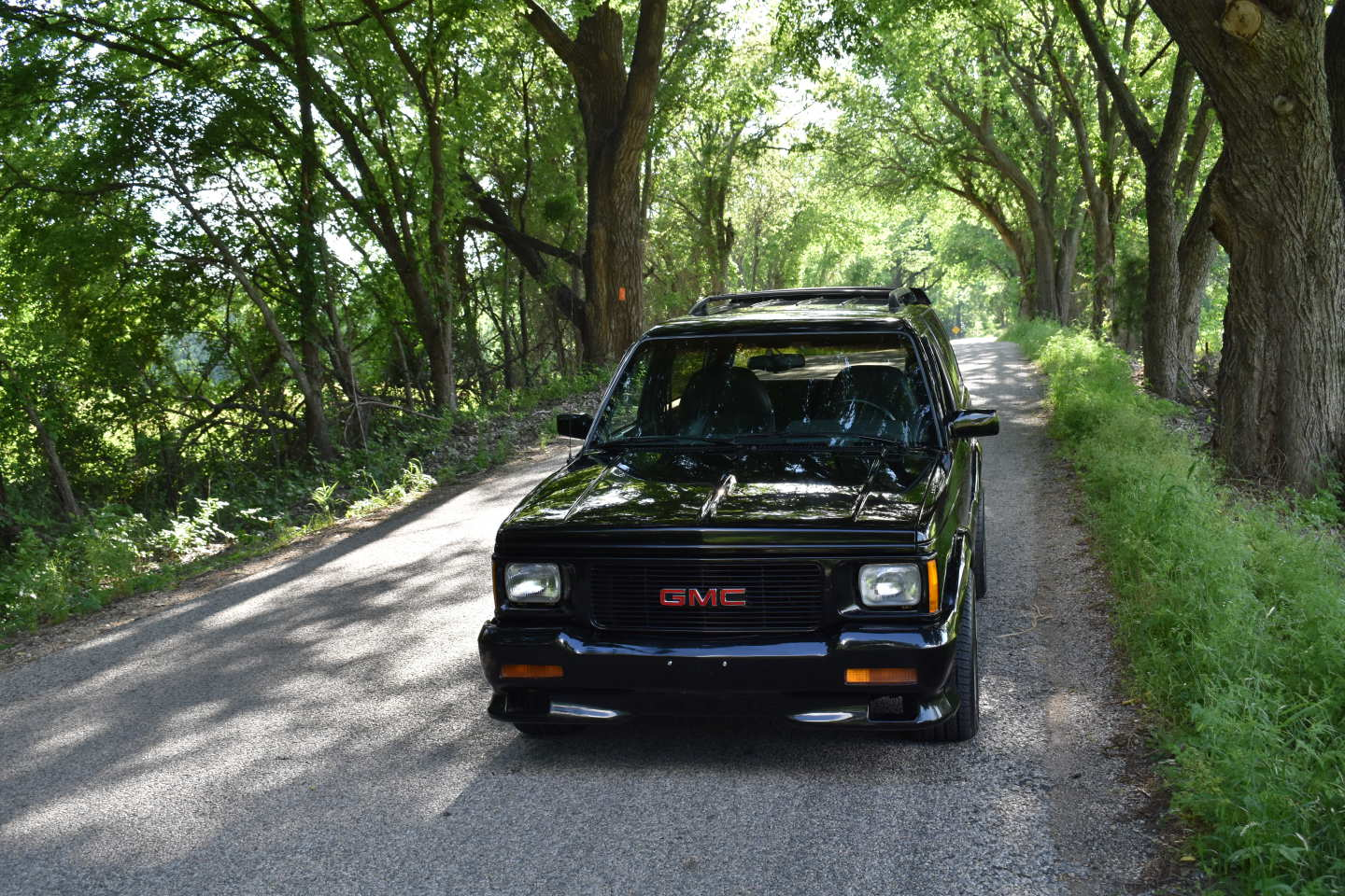 25th Image of a 1993 GMC TYPHOON
