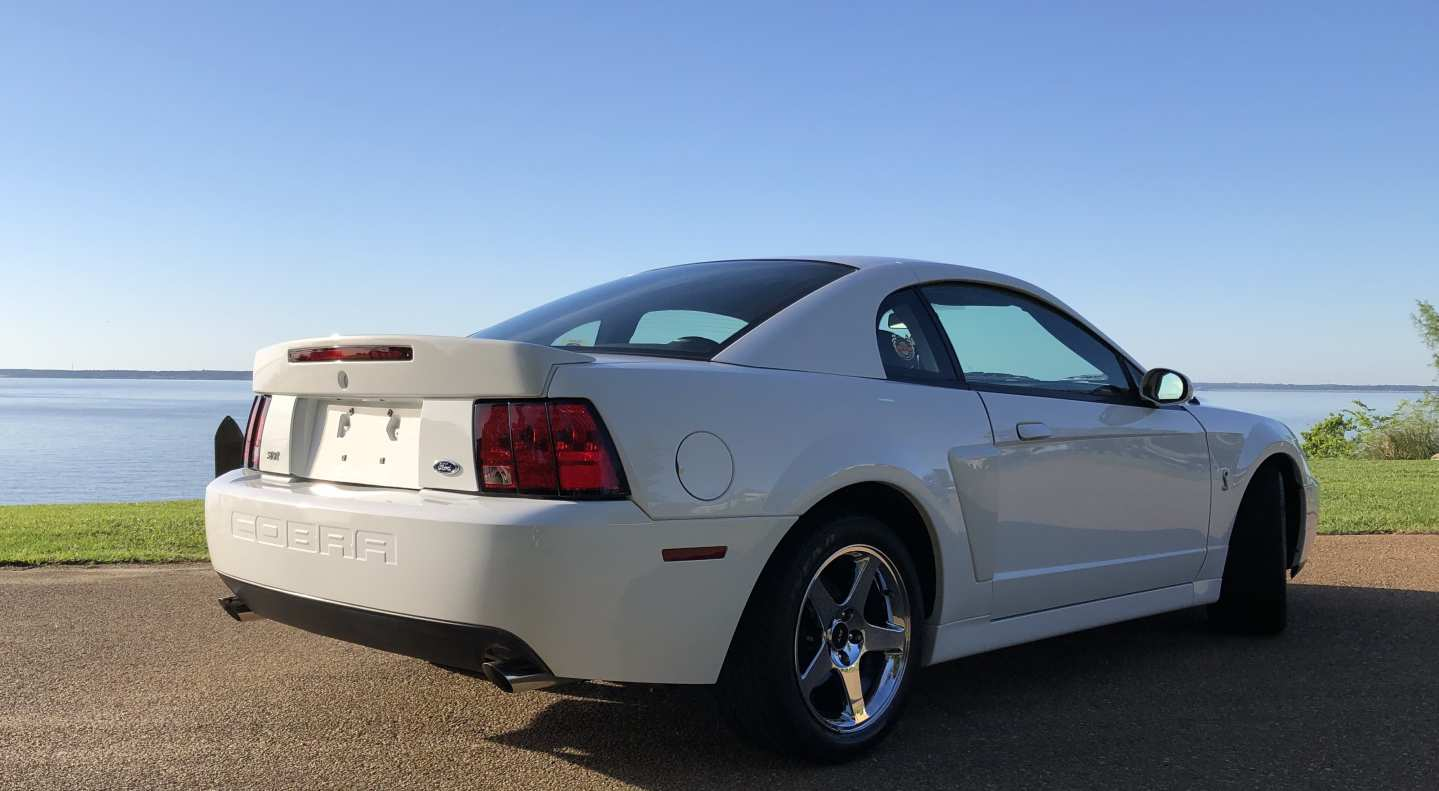 3rd Image of a 2004 FORD MUSTANG COBRA SVT