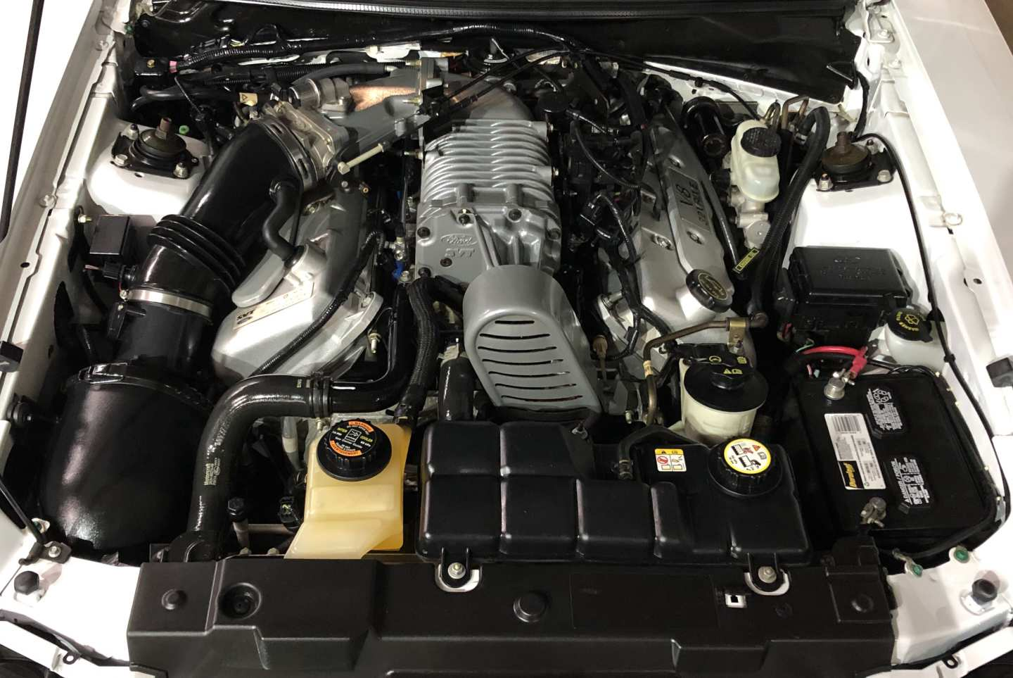 2nd Image of a 2004 FORD MUSTANG COBRA SVT