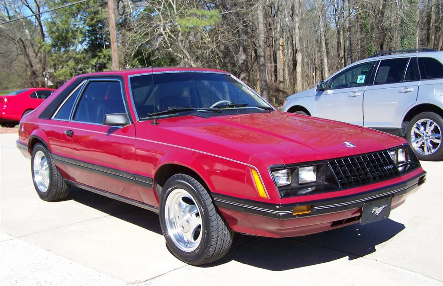 7th Image of a 1981 FORD MUSTANG