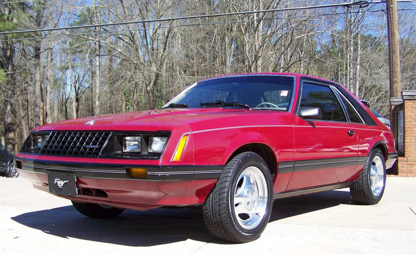 9th Image of a 1981 FORD MUSTANG