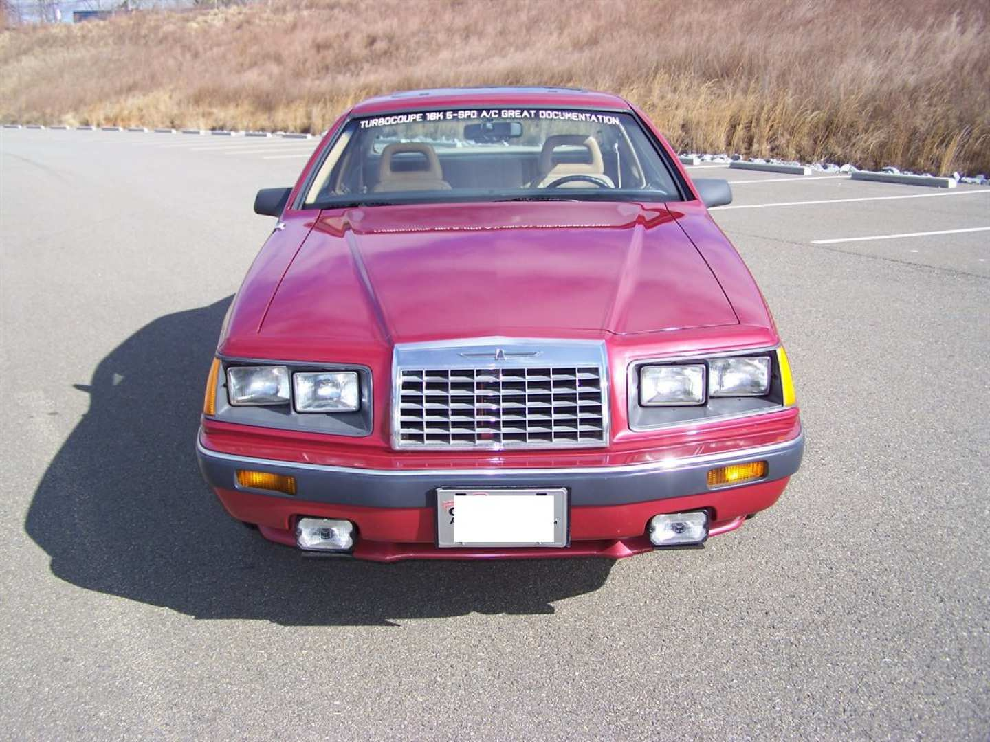 58th Image of a 1984 FORD THUNDERBIRD