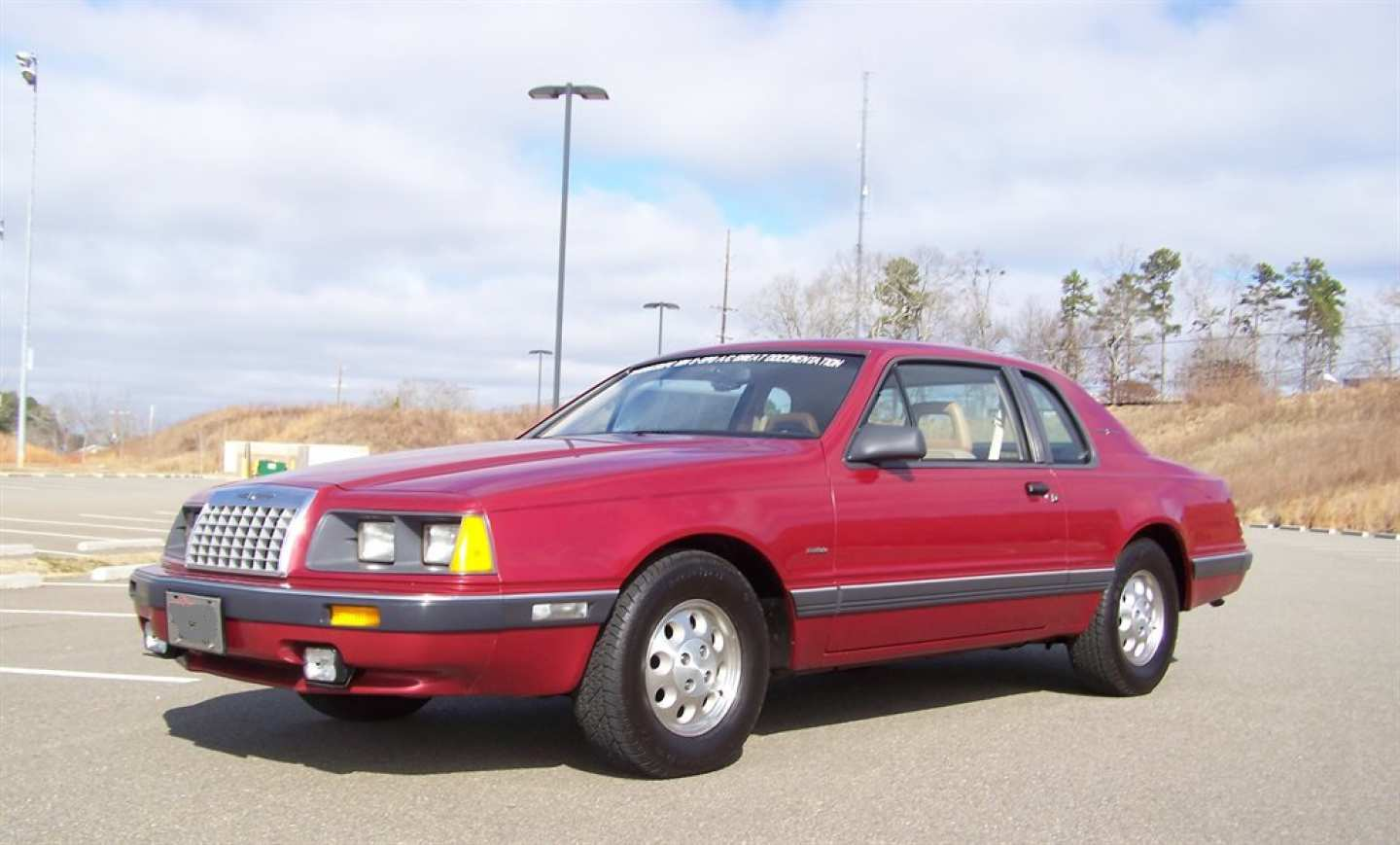 26th Image of a 1984 FORD THUNDERBIRD