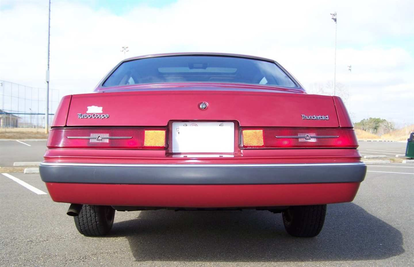 22nd Image of a 1984 FORD THUNDERBIRD