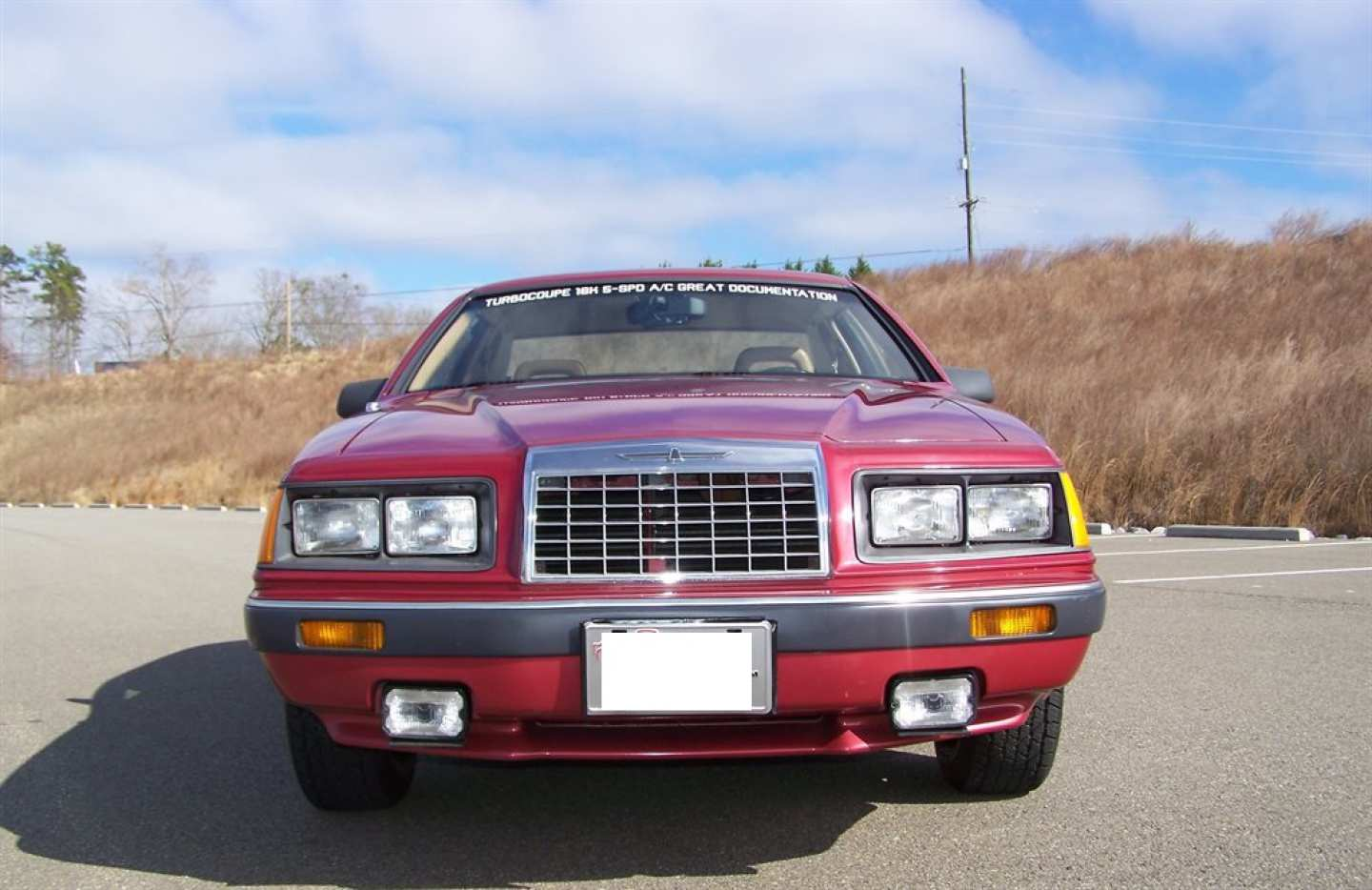 42nd Image of a 1984 FORD THUNDERBIRD