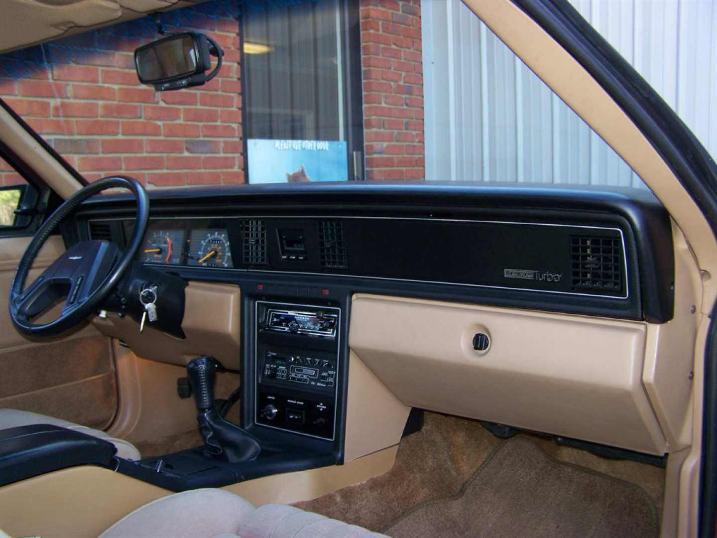 9th Image of a 1984 FORD THUNDERBIRD