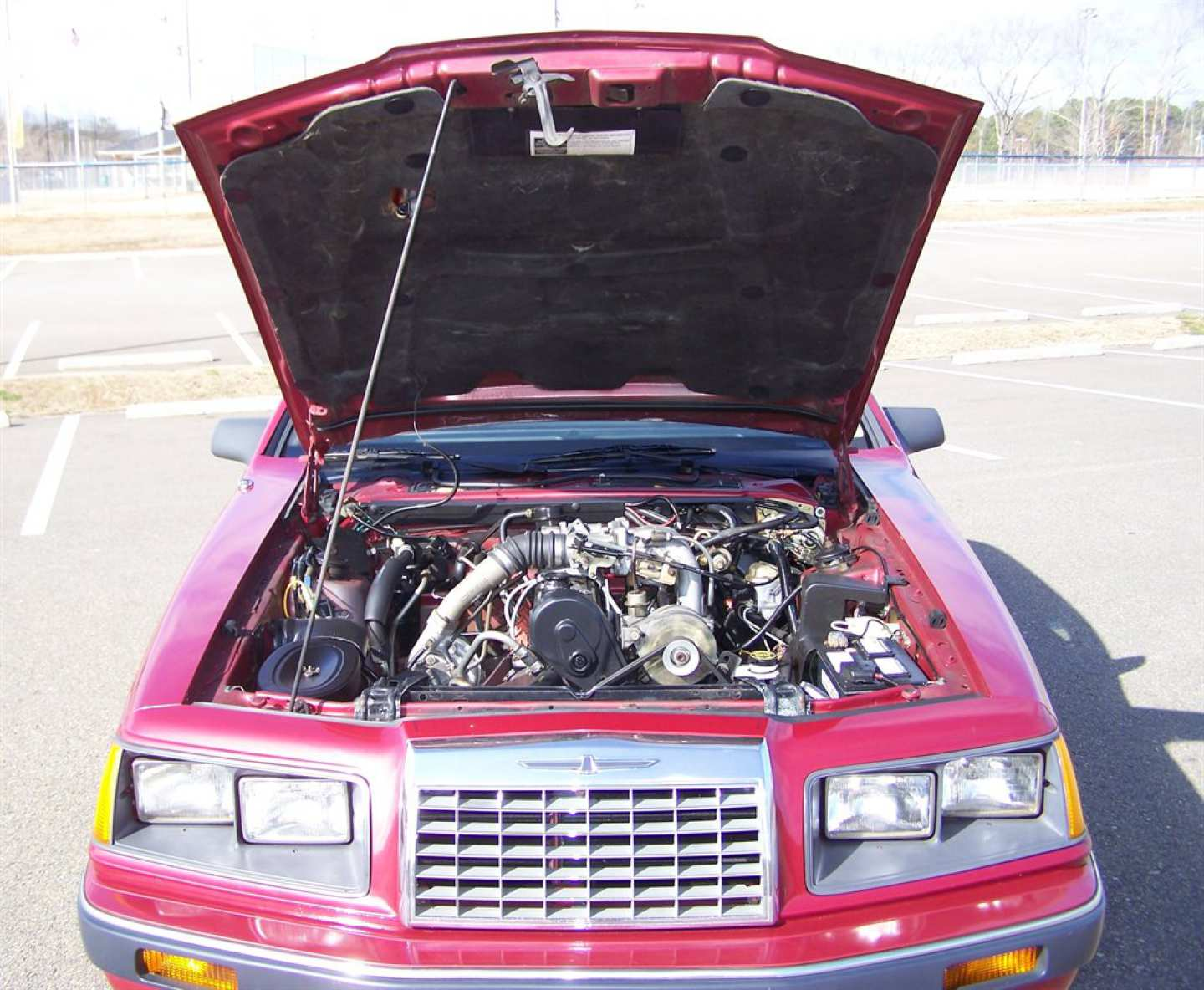 43rd Image of a 1984 FORD THUNDERBIRD