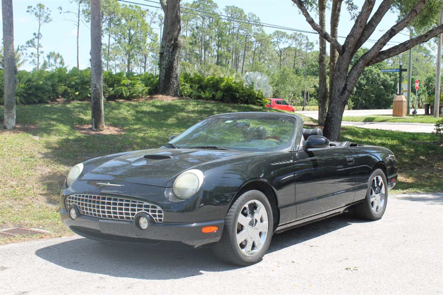 11th Image of a 2002 FORD THUNDERBIRD