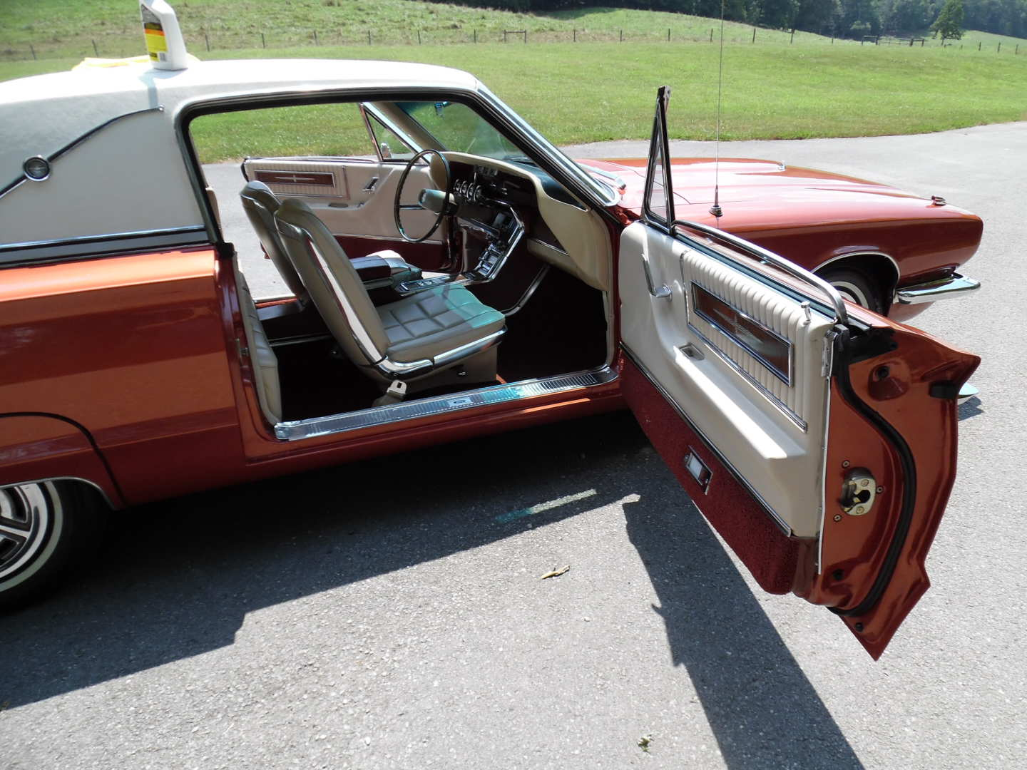 19th Image of a 1966 FORD THUNDERBIRD