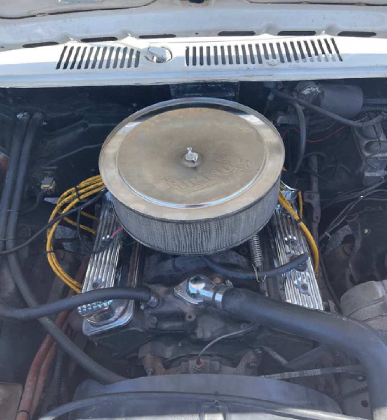 18th Image of a 1984 FORD RANGER