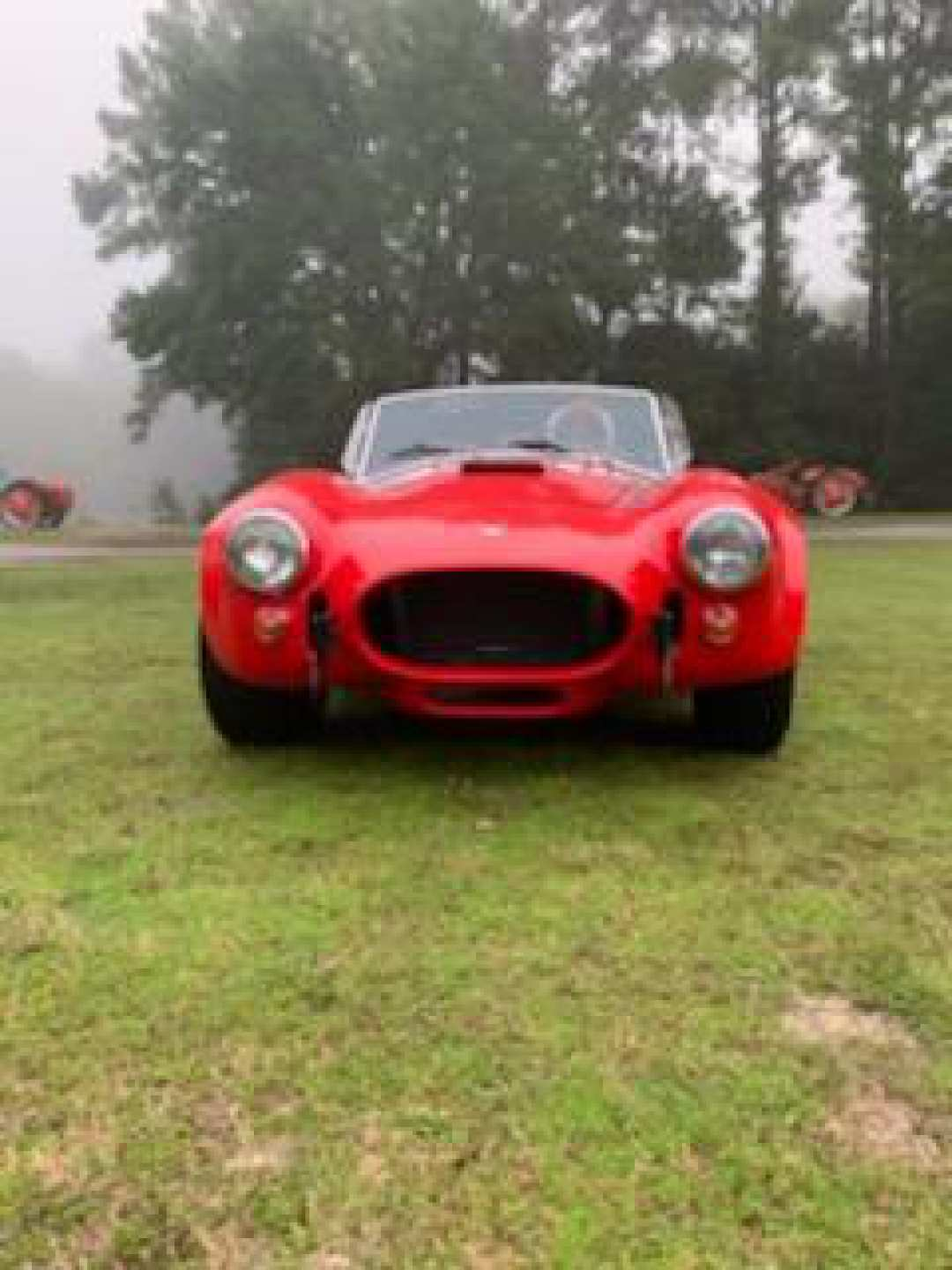 4th Image of a 2015 FORD ASVE SHELBY COBRA