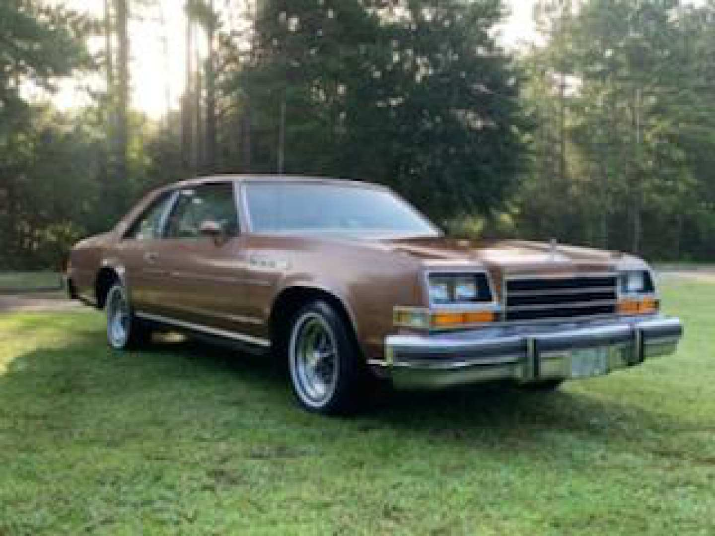 3rd Image of a 1979 BUICK LESABRE