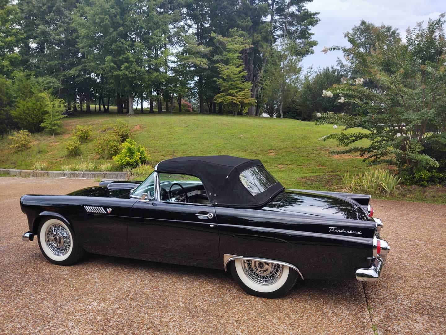 6th Image of a 1955 FORD THUNDERBIRD