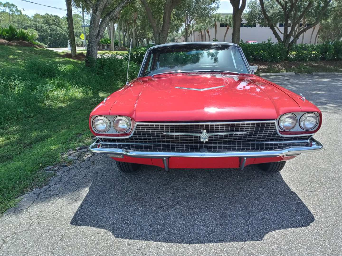 3rd Image of a 1966 FORD THUNDERBIRD