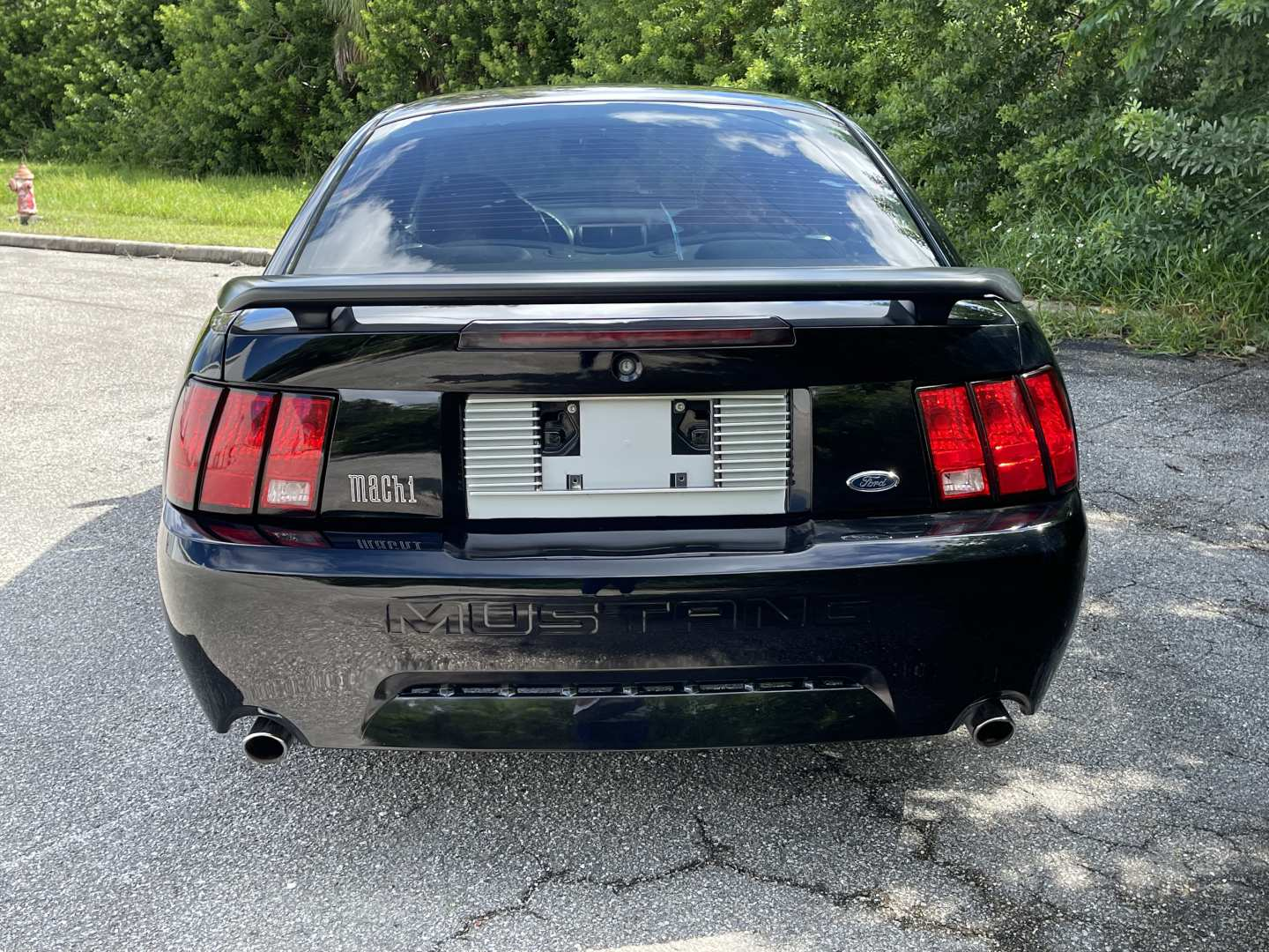 4th Image of a 2003 FORD MUSTANG MACH 1